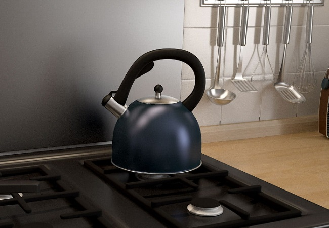 Japanese Tea Kettle